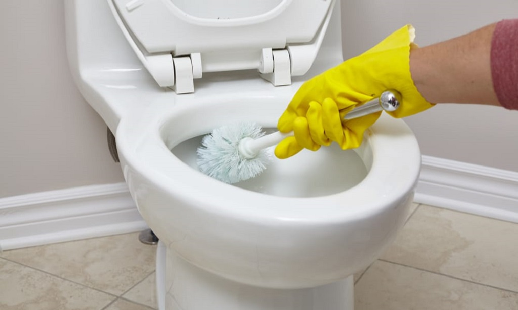 Try if Your Toilet Gets Clogged